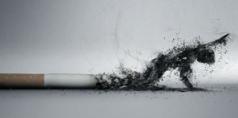 http://health.ezinemark.com/smoking-the-enemy-of-peoples-health-773614b30110.html