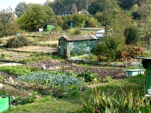 Jardins l 39 influx for Jardin ouvrier