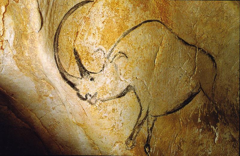 Rhinocéros sur une paroi de la grotte Chauvet
