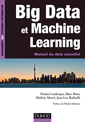 Livre Big Data et Machine Learning, Pirmin Lemberger...