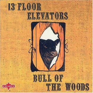 13th Floor Elevators : Bull of the