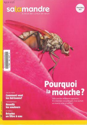 Couverture du numéro 241 de La salamandre contenant un article sur la mouche