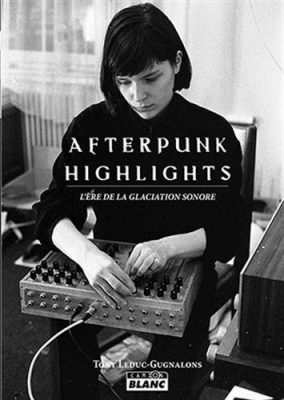 Couverture du livre Afterpunk highlights : l'ère de la glaciation sonore / Tony Leduc-Gugnalon