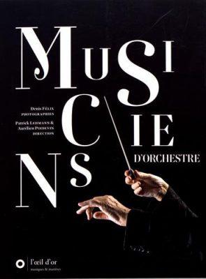 Couverture du livre Musiciens d'orchestre / Patrick Lehmann & Aurélien Poidevin