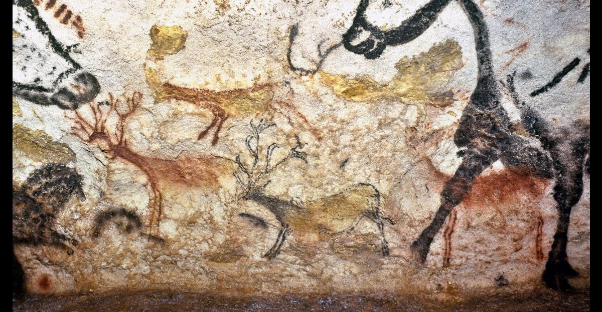 jacquette L'art pariétal au paléolithique
