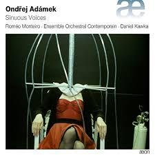 Pochette dudisuqe présentant l'Airmachine d'Adamek