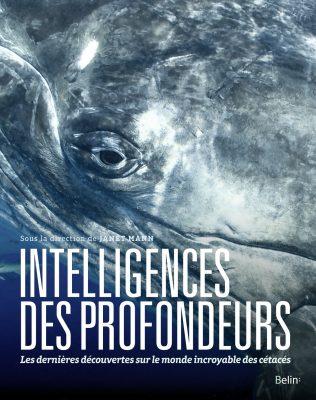 Intelligences des profondeurs, Janet Mann, Belin, 2019