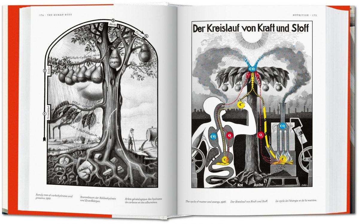 Pages intérieures du livre
